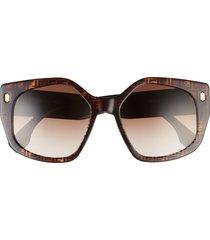 fendi 55mm gradient butterfly sunglasses in havana /gradient brown at nordstrom