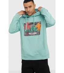 only & sons onsban ovz hoodie sweat tröjor turkos