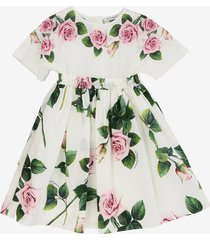 dolce & gabbana roses printed dress
