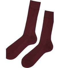 calzedonia short ribbed egyptian cotton socks man burgundy size 40-41