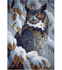 "wilhelm goebel 'winter watch great horned owl' canvas art - 30"" x 47"""