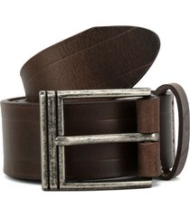 cinturón café colore
