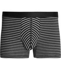 boxer lineas delgadas algodon