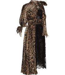 dolce & gabbana paneled lace leopard midi dress - black