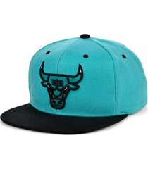 mitchell & ness chicago bulls minted snapback cap