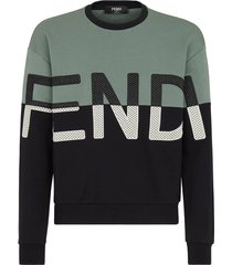 color block logo sweatshirt, black and sage green