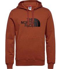 m drew peak plv hd hoodie trui bruin the north face
