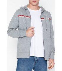 jack & jones jordavis sweat zip hood tröjor ljus grå