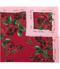 dolce & gabbana rose bloom printed scarf - red