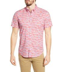 men's bonobos riviera slim fit shark print button-down shirt