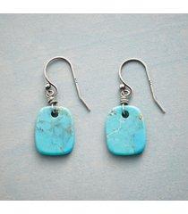 nature's art turquoise earrings