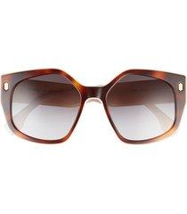 fendi 55mm gradient butterfly sunglasses in blonde havana /gradient smoke at nordstrom