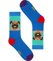 calcetín perro pug men multicolor gazoo