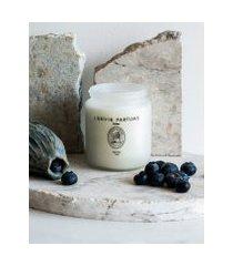 amaro feminino l'envie vela perfumada no pote - 150g, blueberry cassis