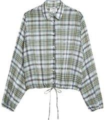 shirt ivy
