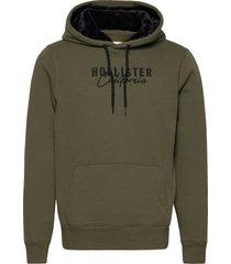 hco. guys sweatshirts hoodie trui groen hollister