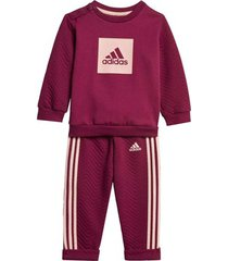 trainingspak adidas warm joggingpak