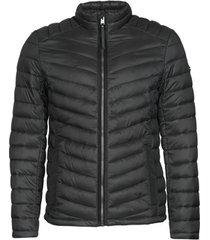 donsjas tom tailor 1019697-29999