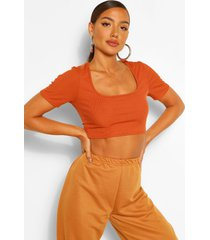 rib cap sleeve square neck crop top, terracotta