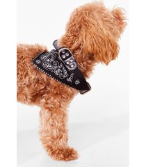 womens howl you doin' bandana dog collar - black