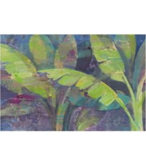 "albena hristova bermuda palms canvas art - 15.5"" x 21"""