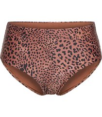 wild s wide side retro bikinitrosa brun seafolly