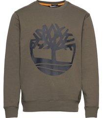core logo crew bb sweat-shirt tröja grön timberland