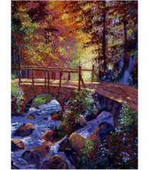 "david lloyd glover 'stone bridge at royal gardens' canvas art - 19"" x 14"""