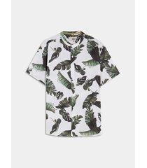 camisa cuello mao hojas
