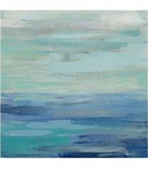 "silvia vassileva sunset beach ii no orange canvas art - 27"" x 33"""