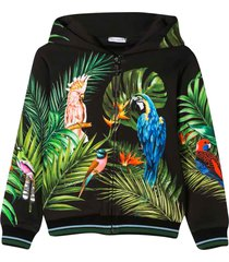 dolce & gabbana multicolor sweatshirt