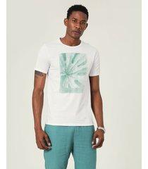 camiseta slim estampada malwee branco - pp