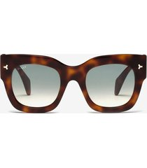 ocean d-frame sunglasses brown 1