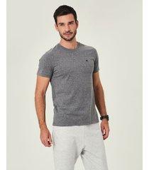 camiseta slim bordada em malha malwee cinza claro - pp
