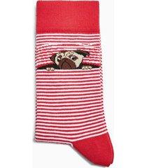 mens red and white stripe pug stripe socks