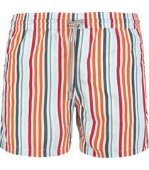 capri code swimsuit with orange and green shades stripes