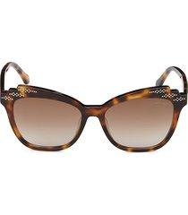 roberto cavalli women's 55mm squared cat eye sunglasses - havana