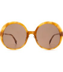 fendi fendi ff 0430/s havana honey sunglasses