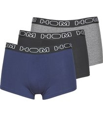 boxers hom hom boxerlines boxer brief