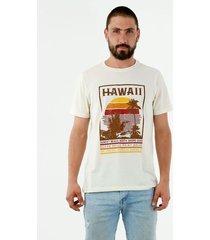 camiseta de hombre, cuello redondo, manga corta, con estampado tropical