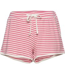 softness shorts shorts rosa missya