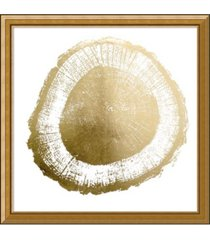 amanti art gold foil tree ring ii metallic print framed art print