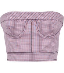philosophy di lorenzo serafini strapless back zip cropped tank top