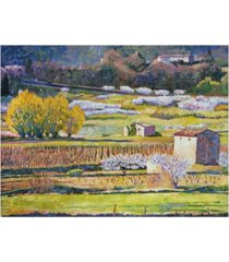 "david lloyd glover provence spring canvas art - 20"" x 25"""