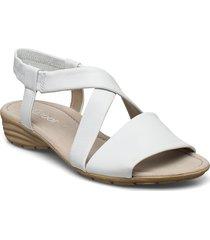 sandals shoes summer shoes flat sandals vit gabor