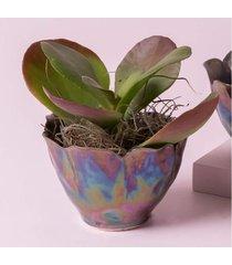 vaso blossom cor: cinza - tamanho: único
