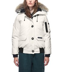 women's canada goose chilliwack hooded down bomber jacket with genuine coyote fur trim, size small - ivory