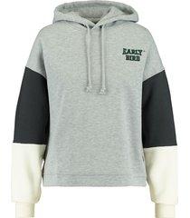 america today hoodie silvy colourblock hooded grijs