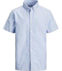 12188691 oxford shirt