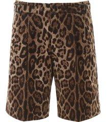 dolce & gabbana leopard print bermuda pants